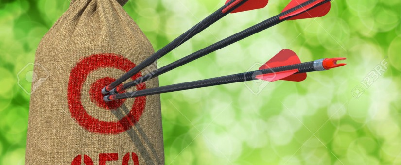 SEO Targets 825x340 1 - Planning On Running an SEO Campaign? Here Are Two Targets You Should Be Measuring.