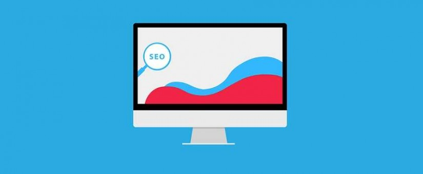 Whole SEO Services 825x340 1 - Improve Your Service Offering By Providing Site Speed Optimisation To Your Clients. See Their ROI Skyrocket